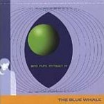 The Blue Whale - The Wind Runs Through It
