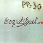 PPz30 - Beautifuel