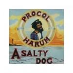 Procol Harum - A Salty Dog (conj.)