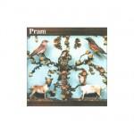 Pram - The Museum Of Imaginary Animals