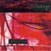 """David Sylvian & Robert Fripp - """"Damage"""""""