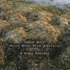 "Trevor Watts Moiré Music Drum Orchestra - ""A Wider Embrace"""
